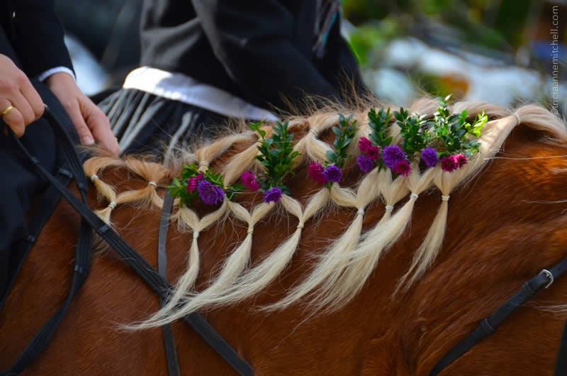 Unterammergau Leonhardiritt horse mane detail