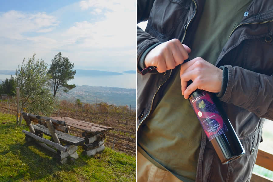 Croatian Wine and View of Adriatic