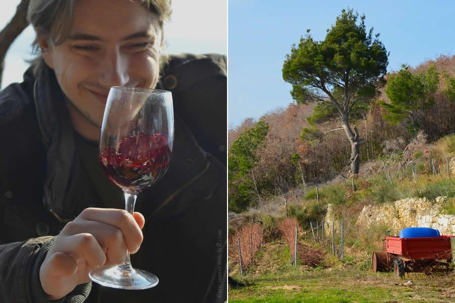 The Art of Wine Tour