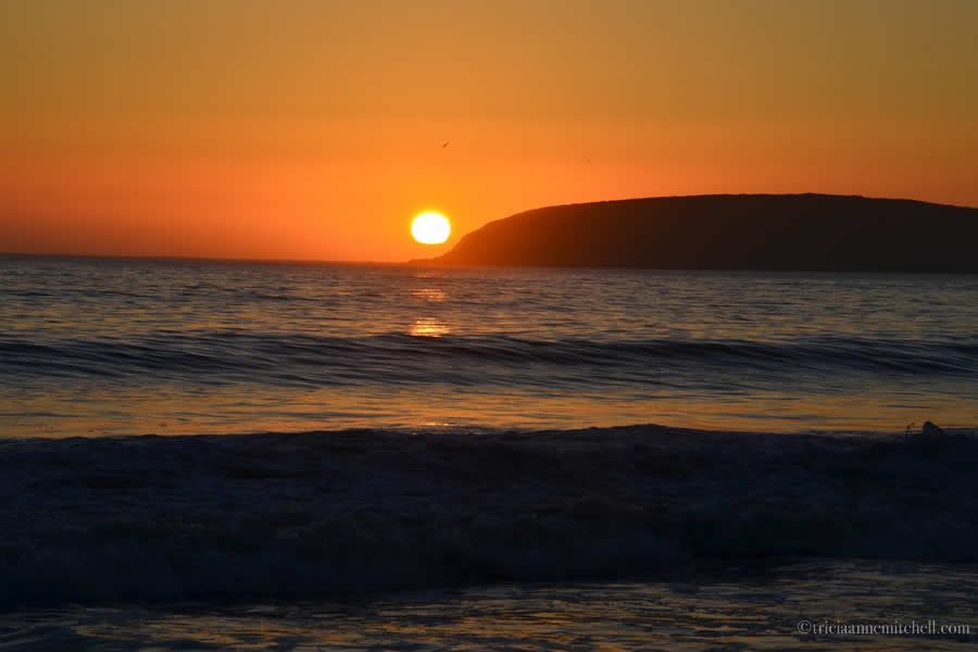 Bodega Bay Beach Sunset California