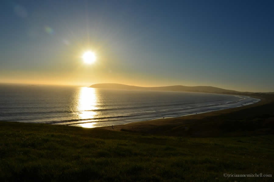 Bodega Bay Beach Sunset