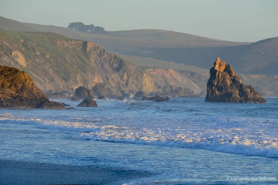 Bodega Bay California Pacific Ocean