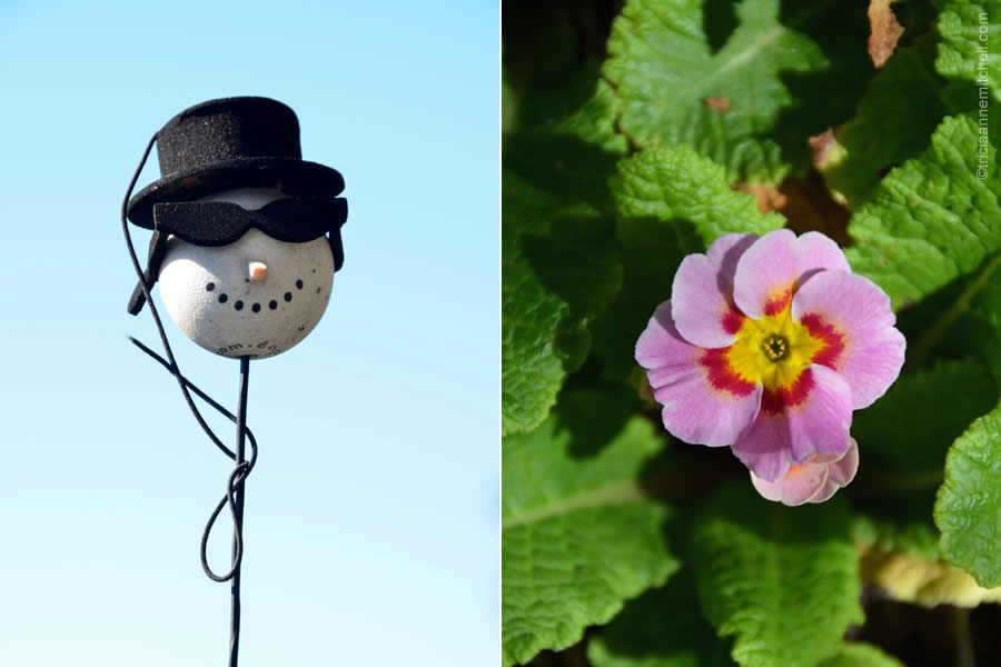 snowman and flower