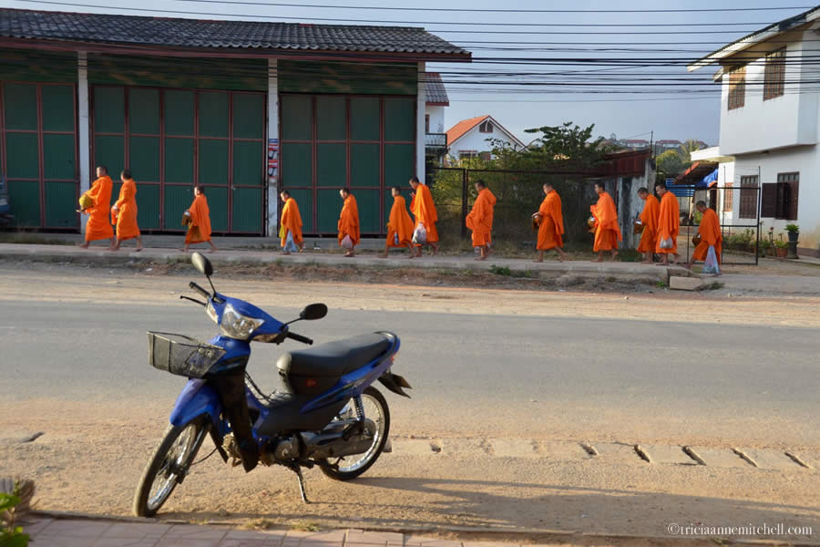 Buddhist Almsgiving Laos Phonsavan