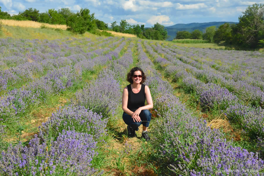 Bulgarian Lavender Field Kalofer