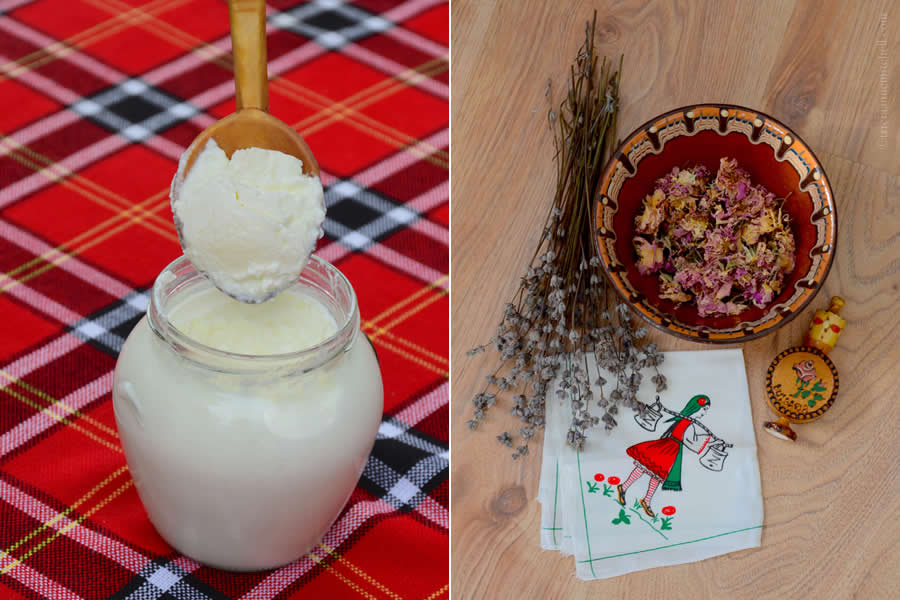 Bulgarian Yogurt and Dishes