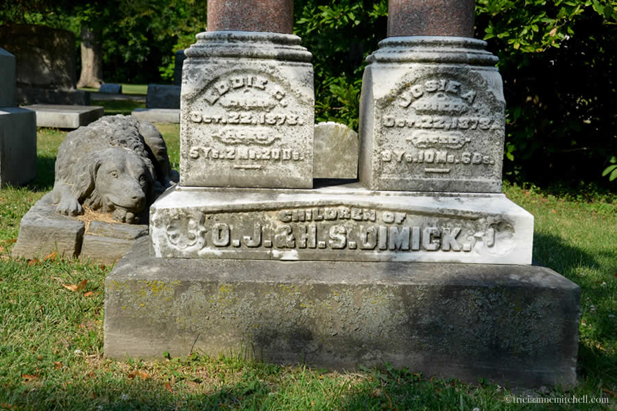 "A closeup of the headstones of Eddie and Josie Dimick.  On the left: ""Eddie C. died Oct. 22, 1878. Aged 5 years, 2 months, 20 days""  On the right: ""Josie A. died Oct. 22, 1878. Aged 9 years, 10 months, 6 days."""