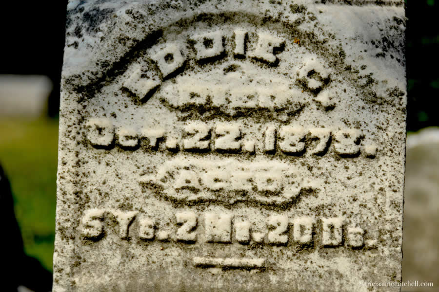 "The headstone of Eddie Dimick reads:  ""Eddie C. died Oct. 22, 1878. Aged 5 years, 2 months, 20 days."""