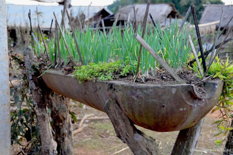 Flower pot made out of bomb casing Laos