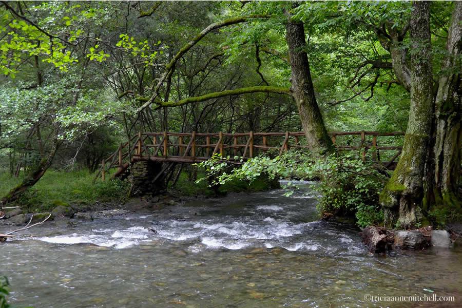 Kalofer Bulgaria Ecotrail