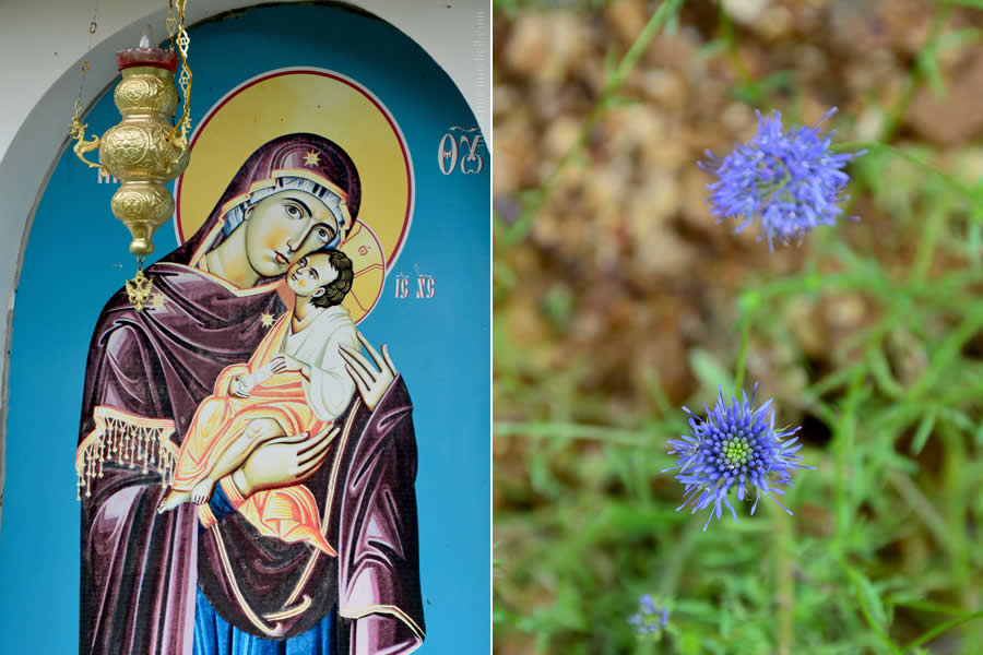 Monastery Flowers in Kalofer bulgaria