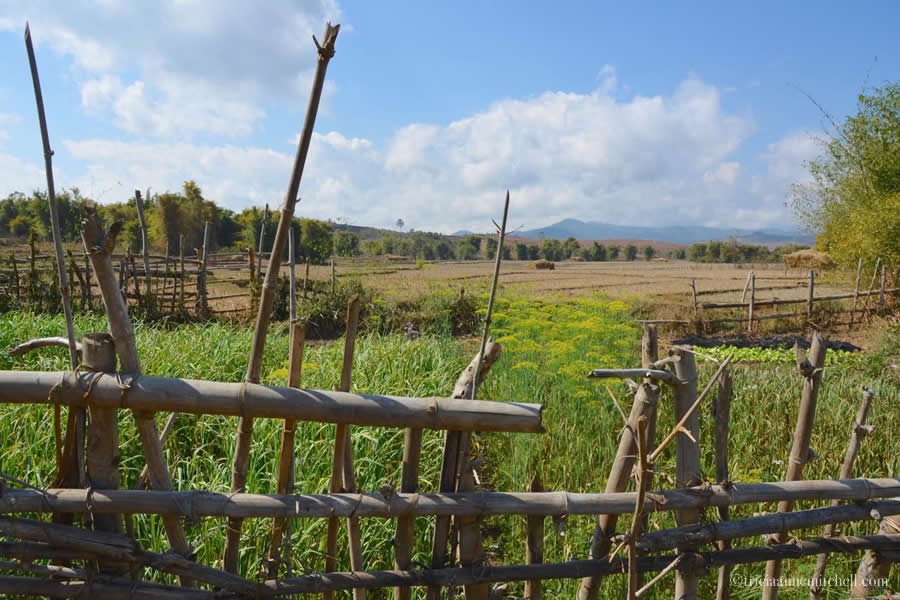 Plain of Jars Site 3 Laotian Landscape