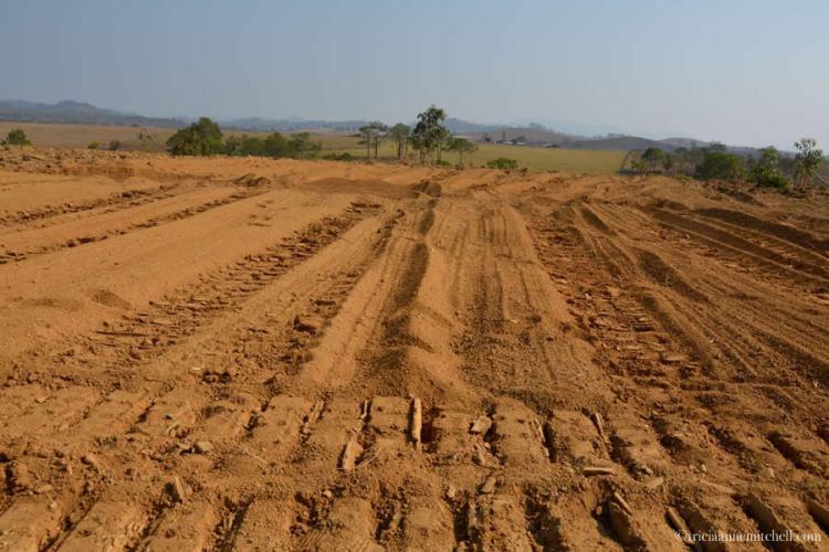 Rural Laos Demined Farmland