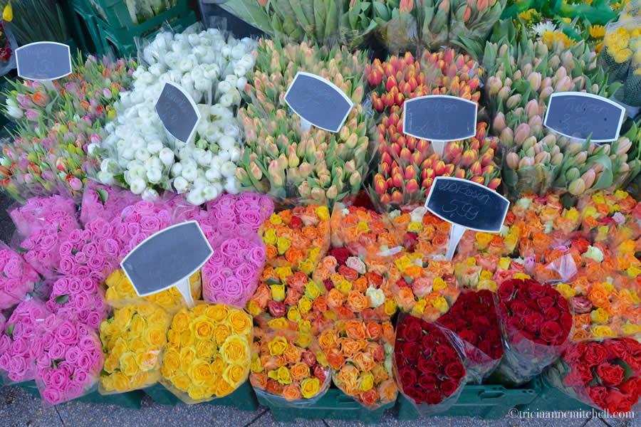 Heidelberg Germany Florist