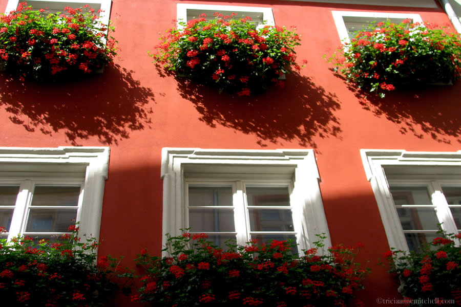 Windowboxes with red flowers decorate the front of  a red building in Heidelberg, Germany's Old Town.