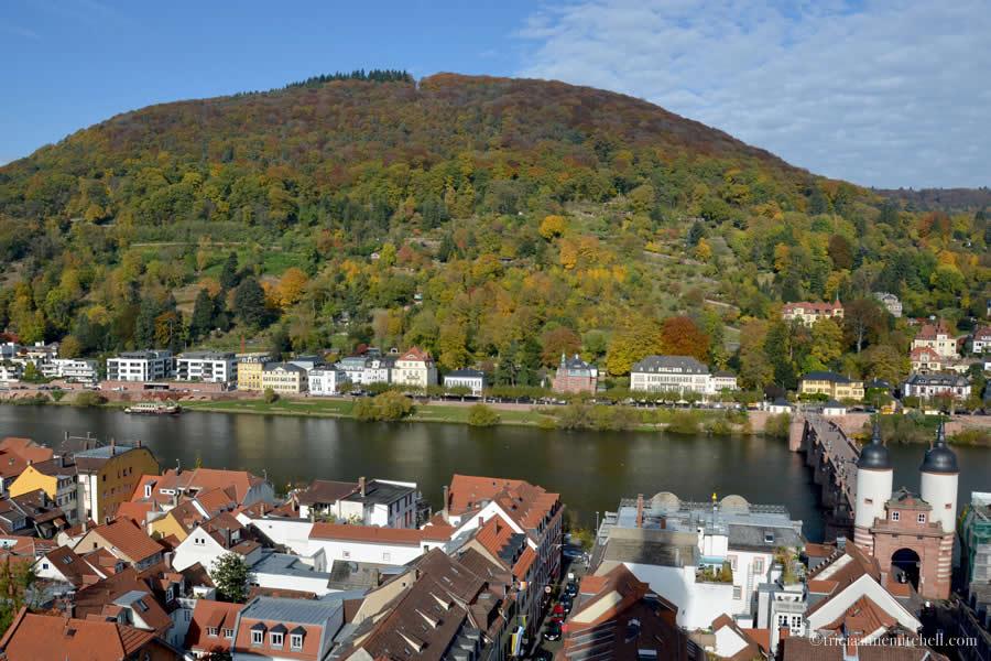 Heidelberg Germany Neckar River Neuenheim