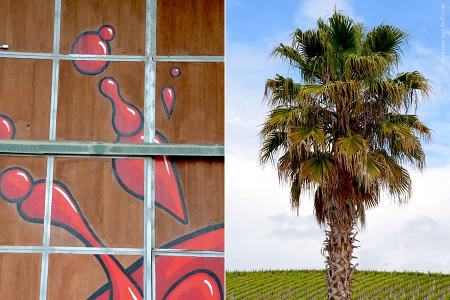 L'Aventure Winery Palm Tree