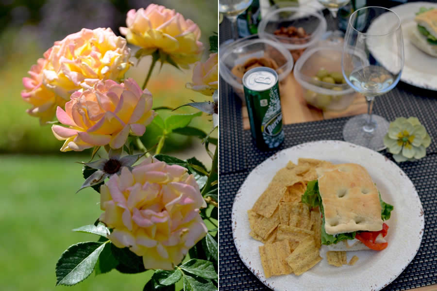 Lunch with Santa Barbara Classic Wine Tours