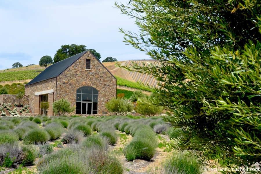 Niner Wine Estate Paso Robles