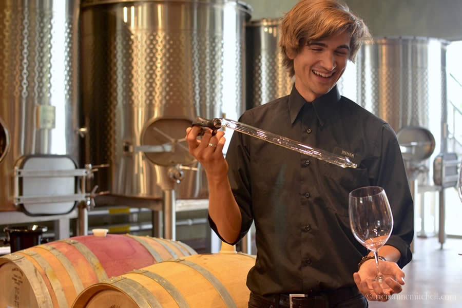 Niner Wine Estates barrel tasting Paso Robles