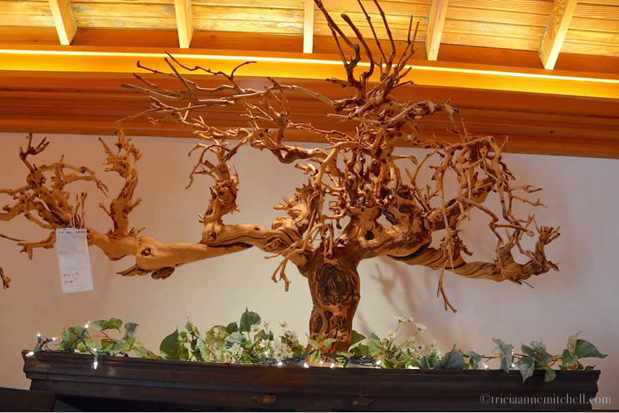 Vine Art Turley Winery Paso Robles