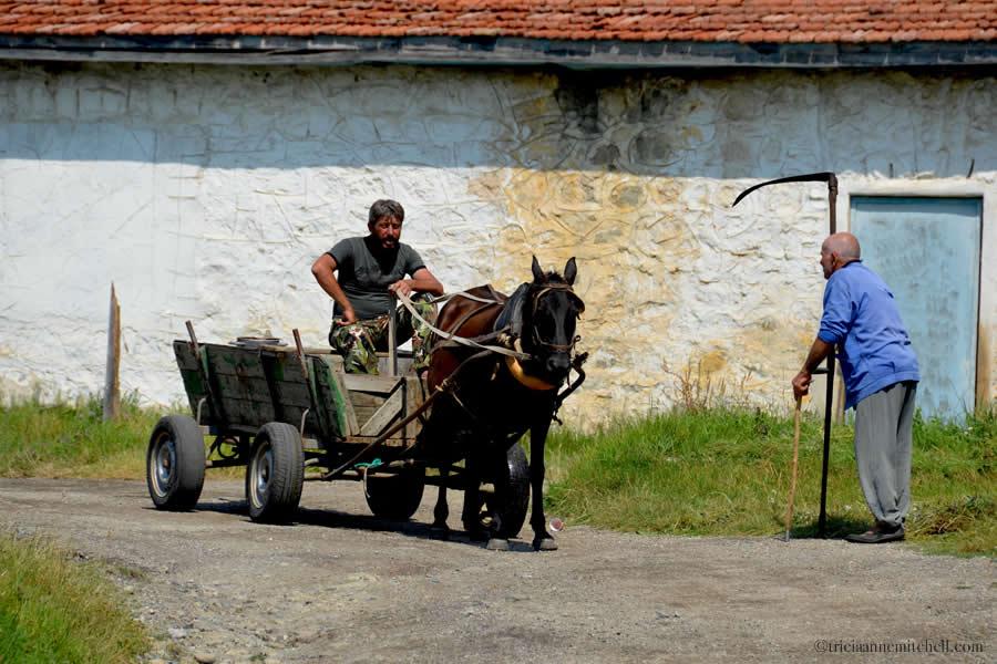 Horse-Drawn Cart and Scythe in Bulgaria