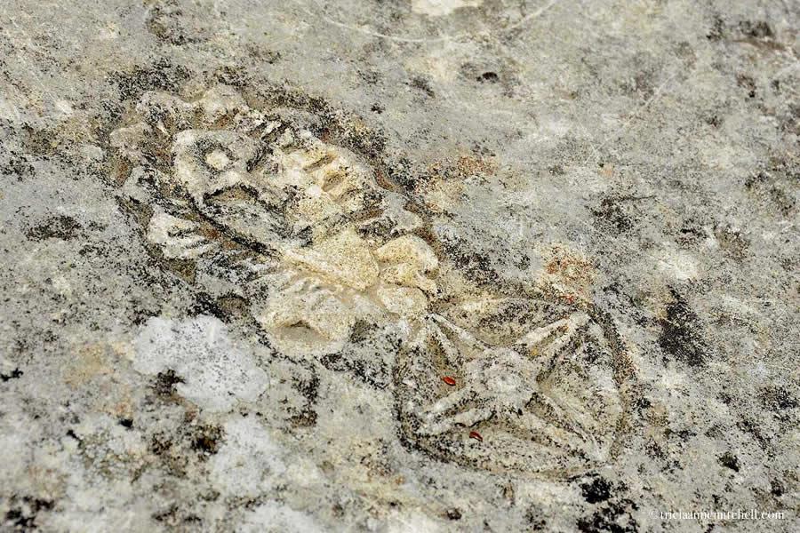 Old Graffitti Carved in Stone Saint Emilion Bordeaux
