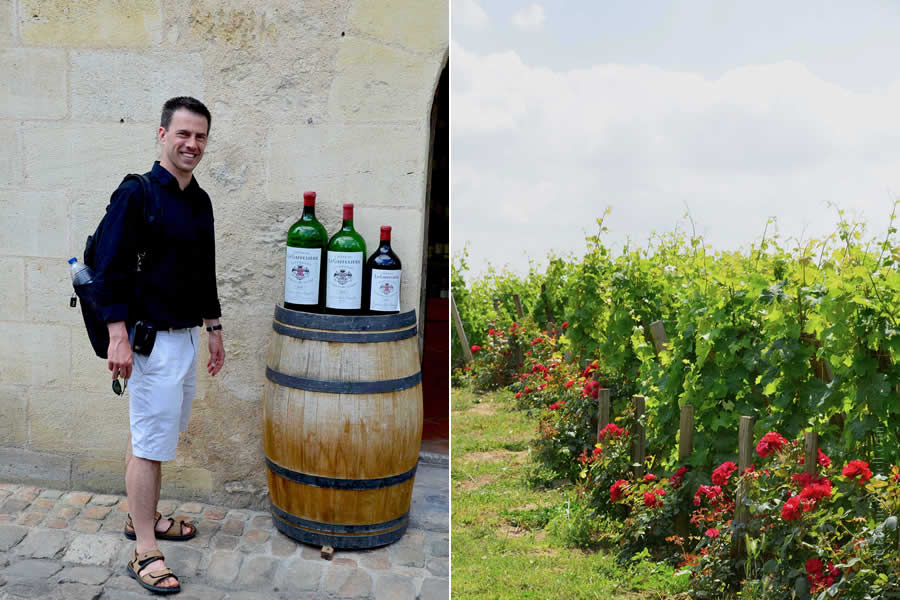 Saint Emilion Bordeaux Wine for Sale Vineyards