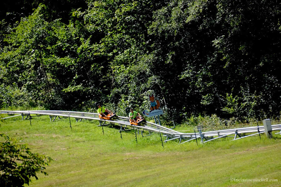 Two people sitting on orange coasters ride on a metal track down a green hillside in Oberammergau, Germany. There is a sign to advertise this alpine coaster.