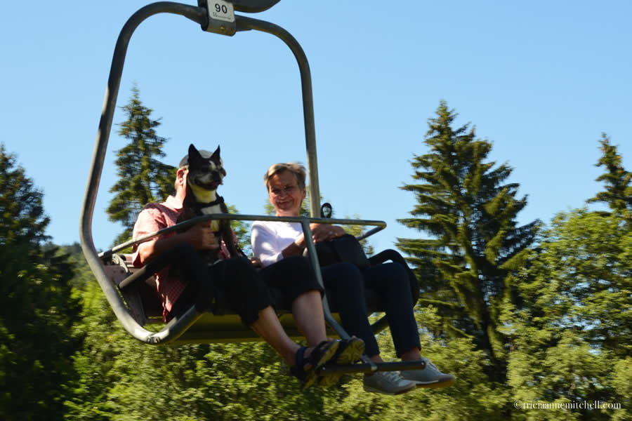 Dog Chair Lift Oberammergau