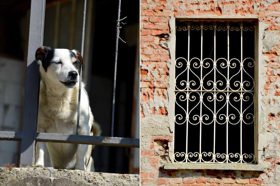 Piemonte Comune di Castelnuovo Calcea Italy