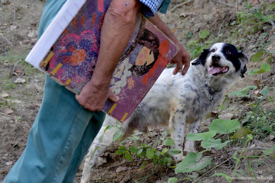 Truffle Hunter Dog Piedmont Italy