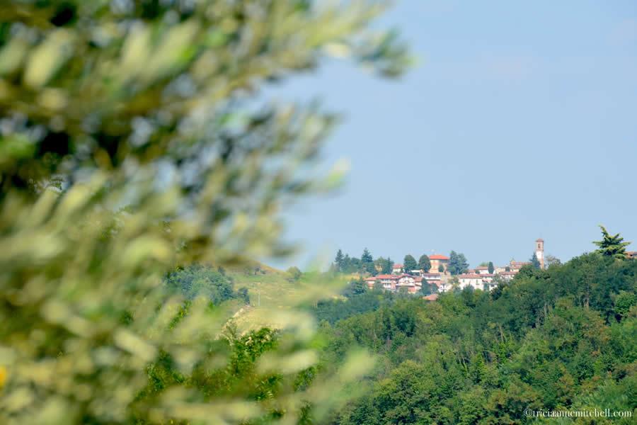 View from Comune di Castelnuovo Calcea