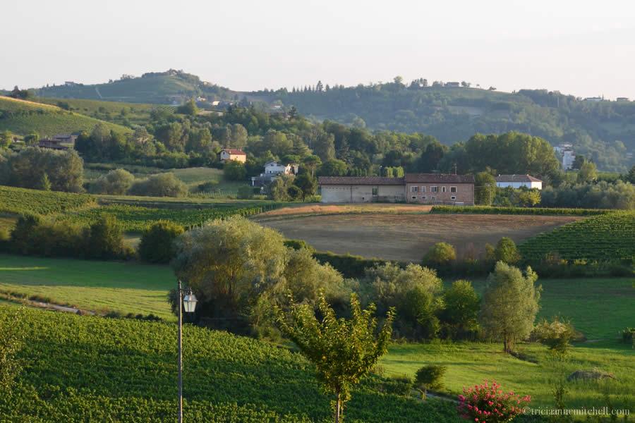 Agriturismo Tenuta La Romana Monferrato View from Balcony