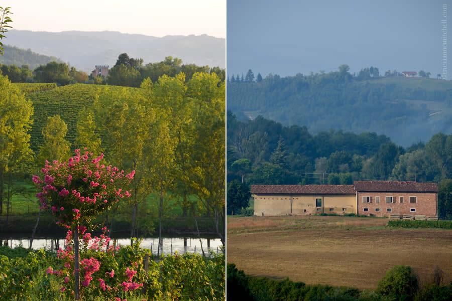 Agriturismo Tenuta La Romana Resort Monferrato