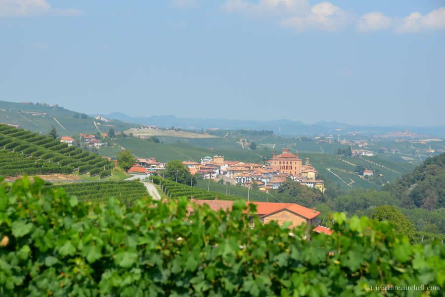 Barolo Italy Landscape
