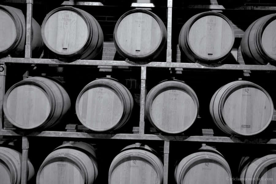 Montaribaldi Winery Barrels Piemonte