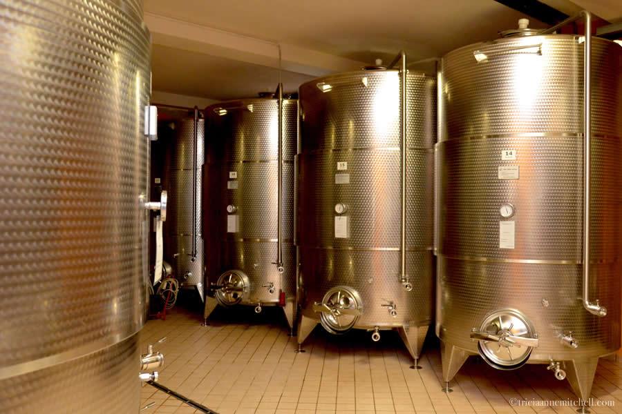 Montaribaldi Winery Piedmont Italy Fermentation Room
