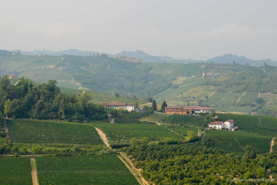 Piedmont Wine Country Langhe Italy