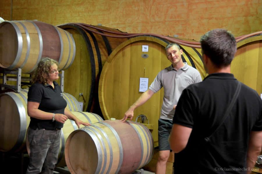 Piedmont Wine Tasting Meet Piemonte
