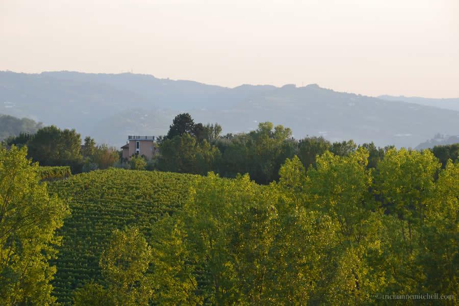 Piemonte Italy Agriturismo Restaurant