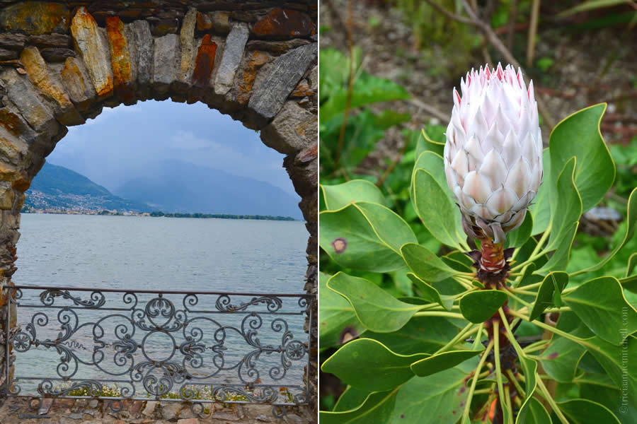 Brissago Islands Botanical Garden