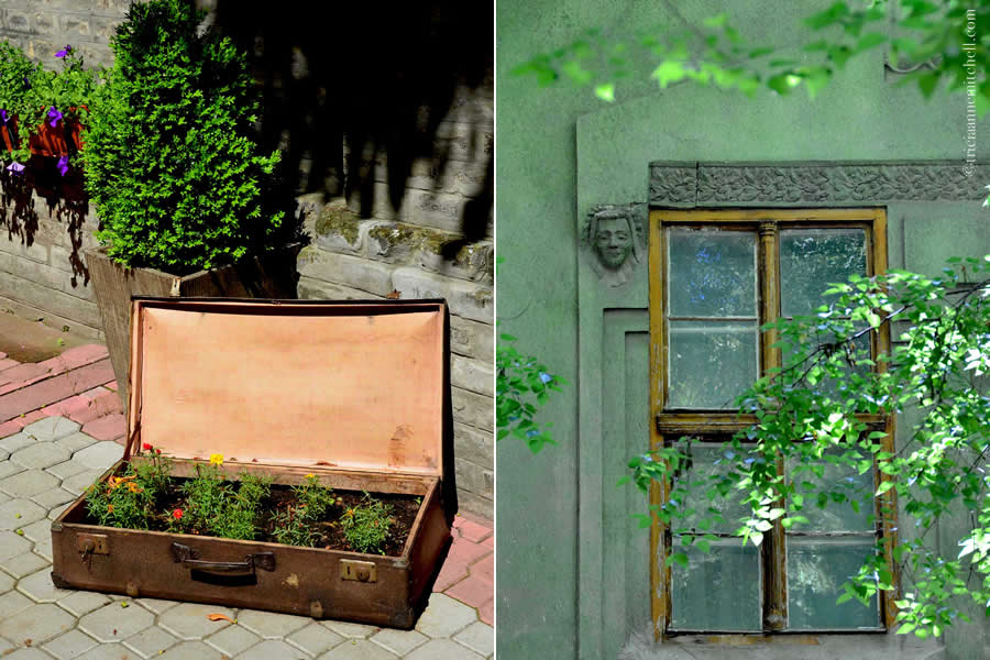 Subotica Serbia Architecture Suitcase with Flowers