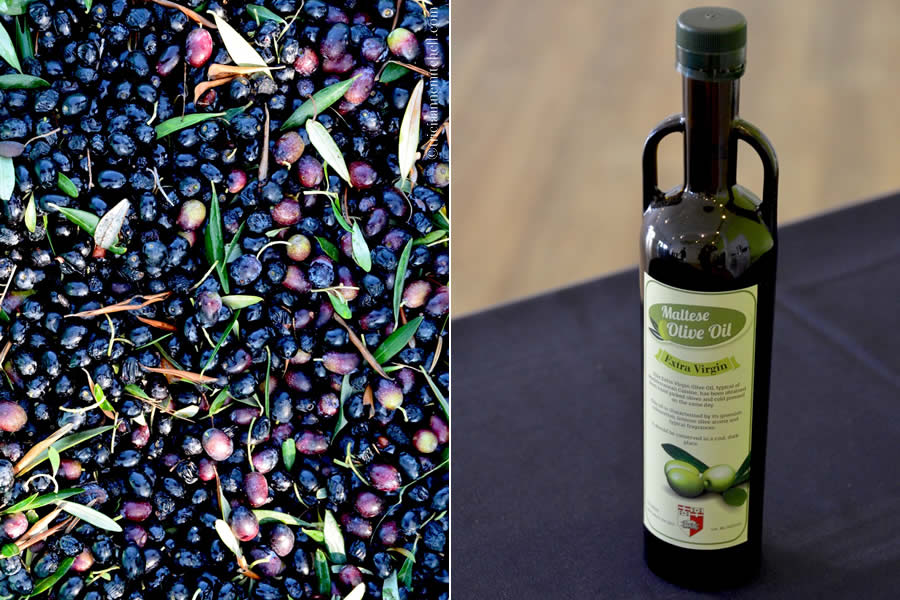 A basket of purple olives on the left, and a bottle of olive oil on the right.