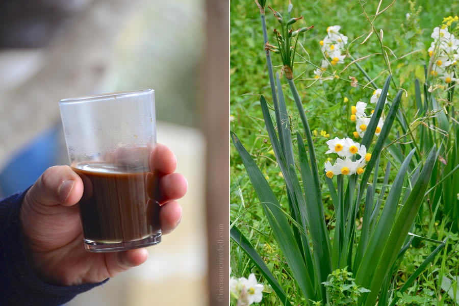 Glass of Maltese coffee and flowers in garden