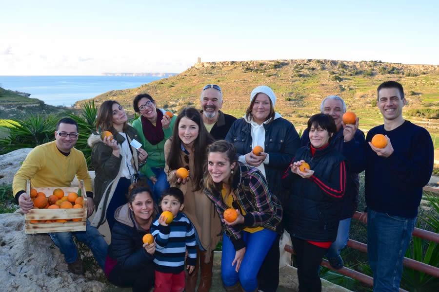 Harvesting Oranges Merill Ecotour