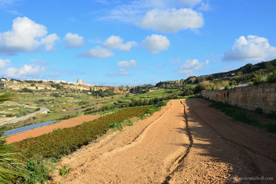 Maltese Countryside Agriculture Fields