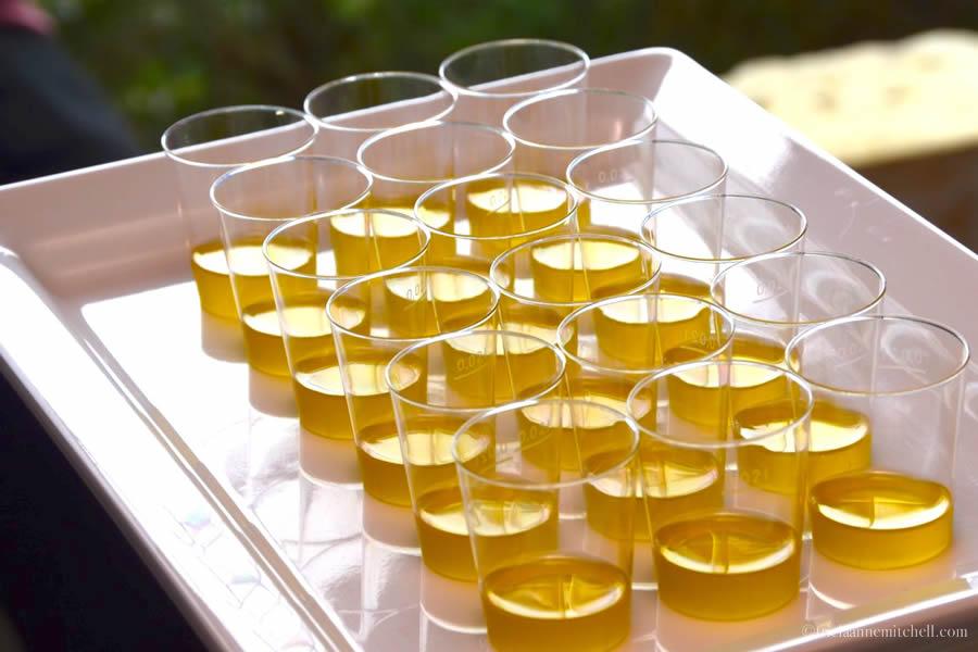 Olive Oil Tasting Malta