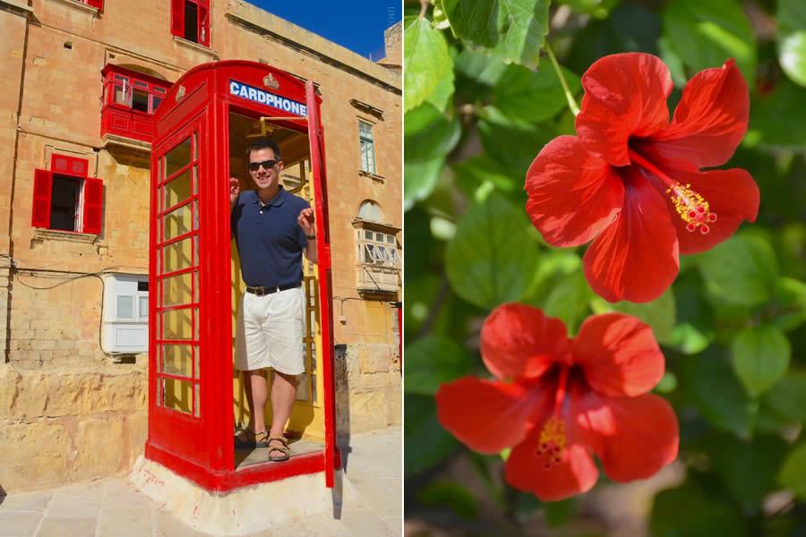 Malta British Phone Booth and Hibiscus Flowers