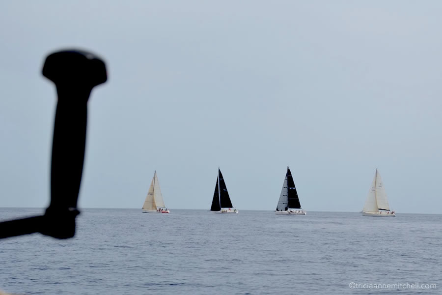 Malta Sailing Race